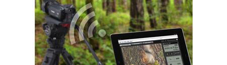 Connectivité Wi-Fi de Canon