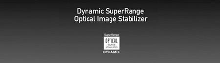 Dynamic Image Stabilization